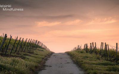 nostetta-ja-energiaa-erja-lahdenpera-helsinki-mindfulness-blogi