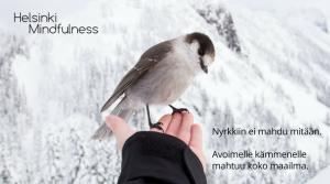 Irti päästäminen, Helsinki Mindfulness, Erja Lahdenperä