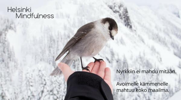 Irti-paastaminen-Helsinki-Mindfulness-Erja-Lahdenpera