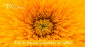 Helsinki Mindfulness, Elämän vastaanottaminen hymyillen, meditaatio, Erja Lahdenperä