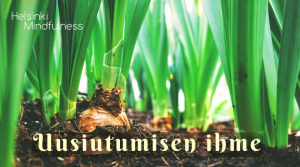 Helsinki Mindfulness, Uusiutumisen ihme, Erja Lahdenperä