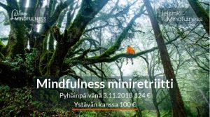 helsinki Mindfulness, Miniretriitti